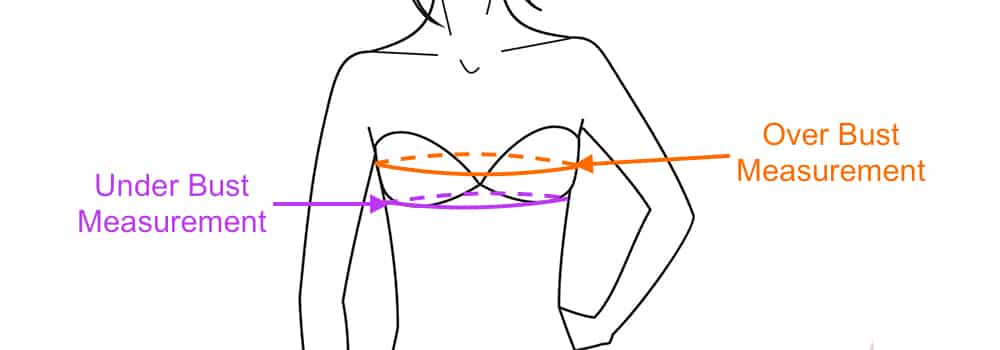 drawing of bust measurement