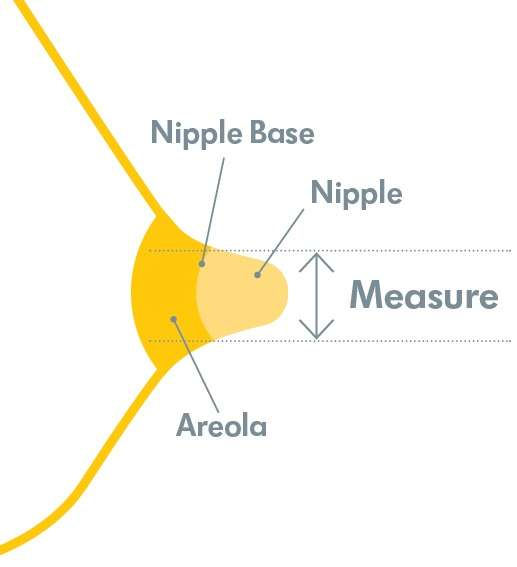 drawing to illustrate how to measure a nipple shield for breastfeeding